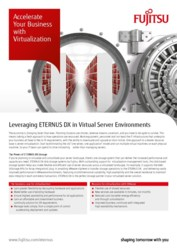 Fujitsu ETERNUS DX in Virtual Server Environment