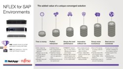 Infographic NFLEX for SAP Environments