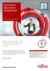 Flyer: PRIMEFLEX Integrated Systems