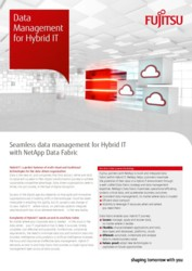 Data Management for Hybrid IT