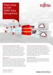 Data Management for SAP (APAC)