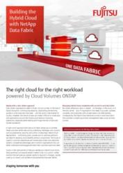 BROCHURE Building the Hybrid Cloud with NetApp Data Fabric